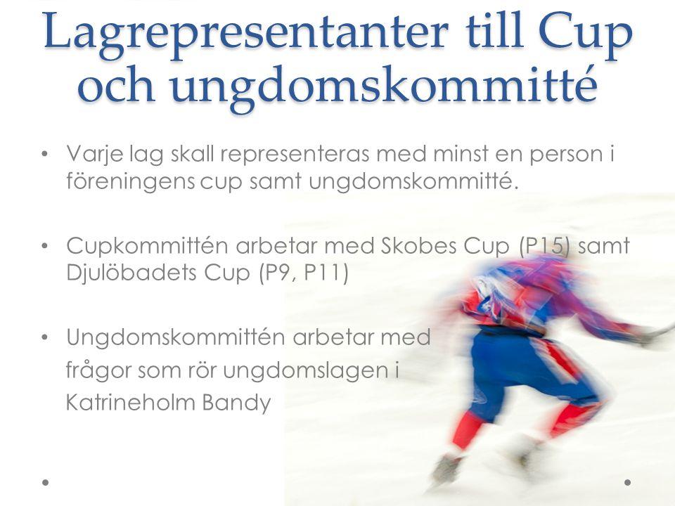Lagrepresentanter till Cup och ungdomskommitté Varje lag skall representeras med minst en person i föreningens cup samt ungdomskommitté. Cupkommittén