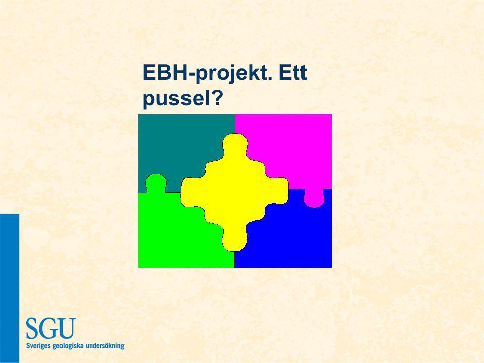EBH-projekt. Ett pussel?