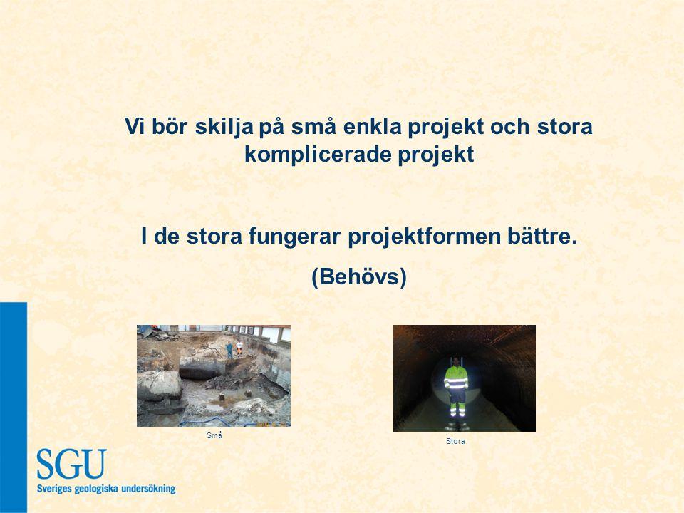 Vi bör skilja på små enkla projekt och stora komplicerade projekt I de stora fungerar projektformen bättre. (Behövs) Små Stora