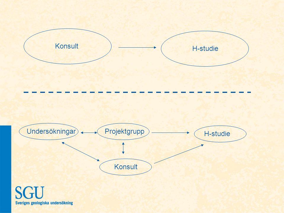 Konsult H-studie ProjektgruppUndersökningar Konsult