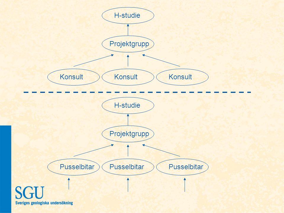 H-studie Projektgrupp Konsult H-studie Projektgrupp Pusselbitar