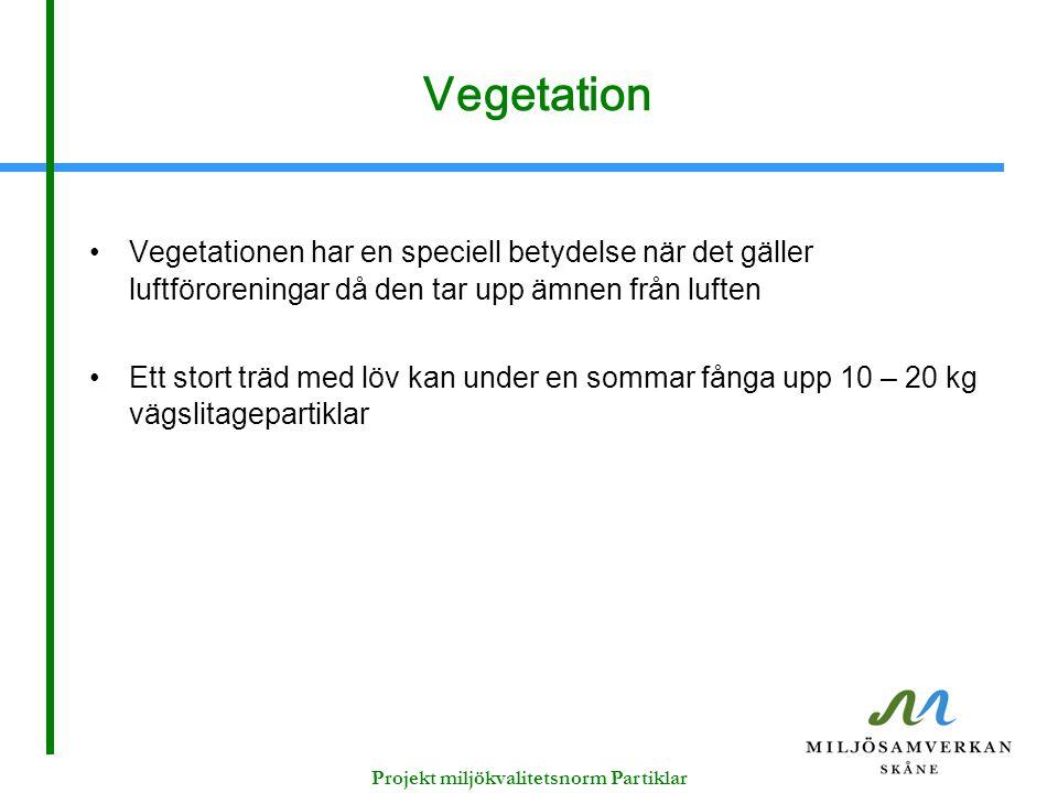 Vegetation Vegetationen har en speciell betydelse när det gäller luftföroreningar då den tar upp ämnen från luften Ett stort träd med löv kan under en