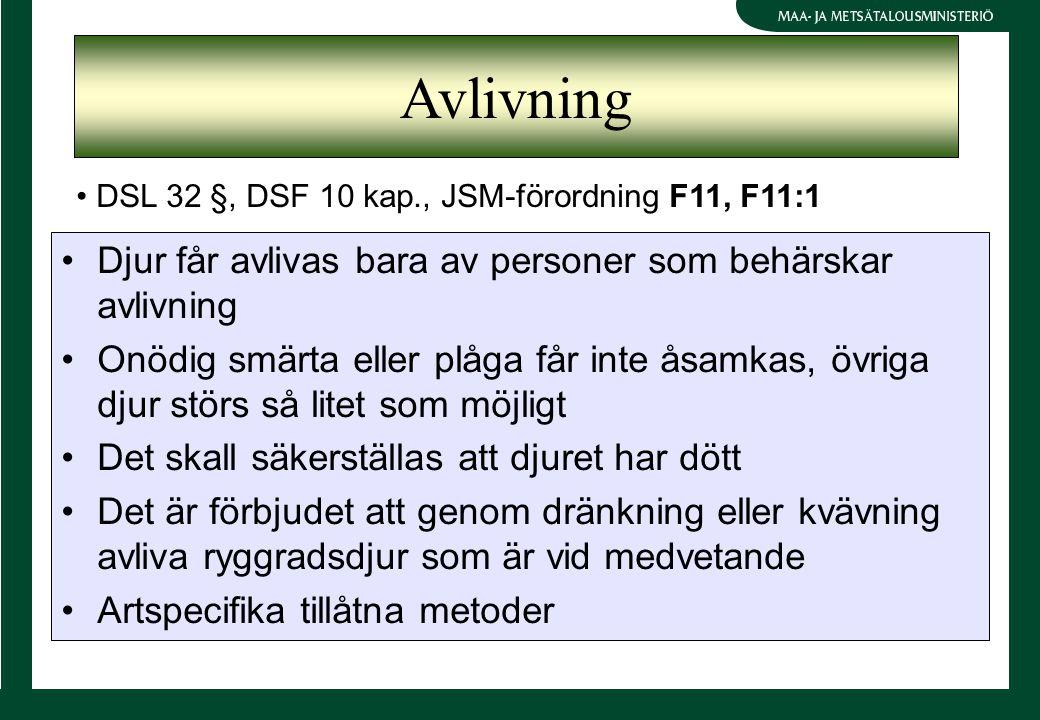 Djur får avlivas bara av personer som behärskar avlivning Onödig smärta eller plåga får inte åsamkas, övriga djur störs så litet som möjligt Det skall säkerställas att djuret har dött Det är förbjudet att genom dränkning eller kvävning avliva ryggradsdjur som är vid medvetande Artspecifika tillåtna metoder DSL 32 §, DSF 10 kap., JSM-förordning F11, F11:1 Avlivning