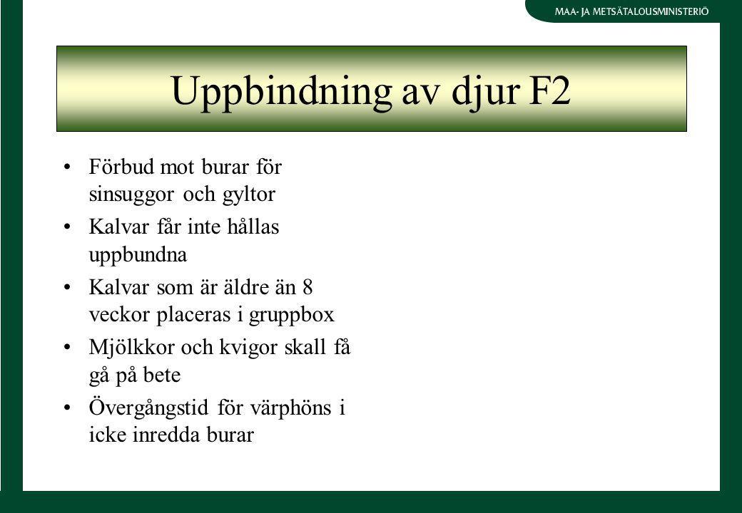 Uppbindning av djur F2 Förbud mot burar för sinsuggor och gyltor Kalvar får inte hållas uppbundna Kalvar som är äldre än 8 veckor placeras i gruppbox