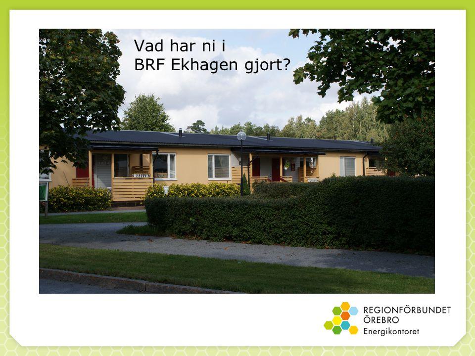 Vad har ni i BRF Ekhagen gjort?