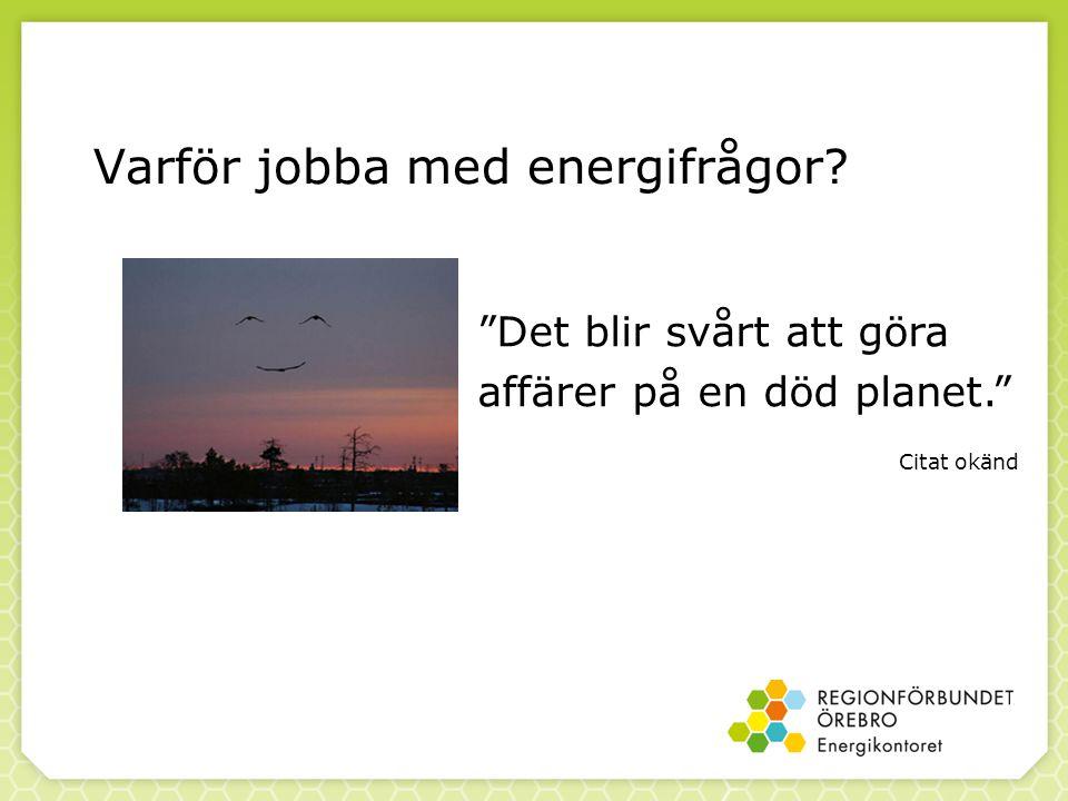 Varför jobba med energifrågor Det blir svårt att göra affärer på en död planet. Citat okänd