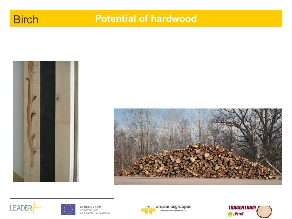 Potential of hardwood Europeiska Unionen Utvecklings- och garantifonden för jordbruket Birch