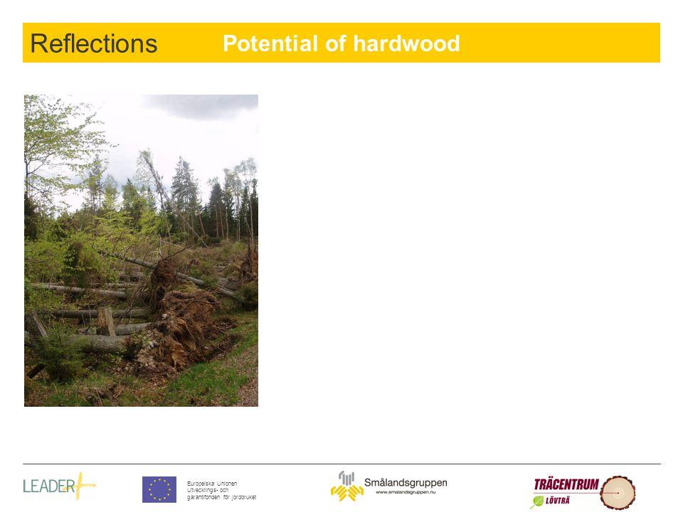 Potential of hardwood Europeiska Unionen Utvecklings- och garantifonden för jordbruket Reflections