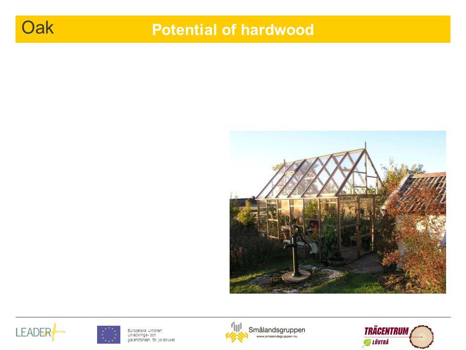 Potential of hardwood Europeiska Unionen Utvecklings- och garantifonden för jordbruket Oak