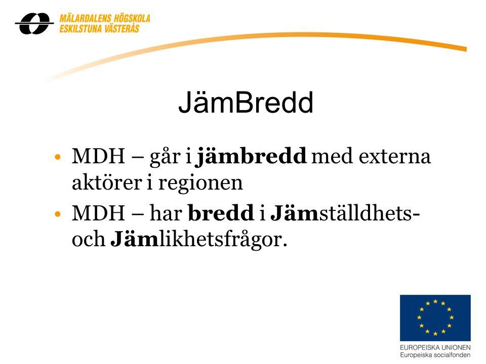 2 JämBredd MDH – går i jämbredd med externa aktörer i regionen MDH – har bredd i Jämställdhets- och Jämlikhetsfrågor.