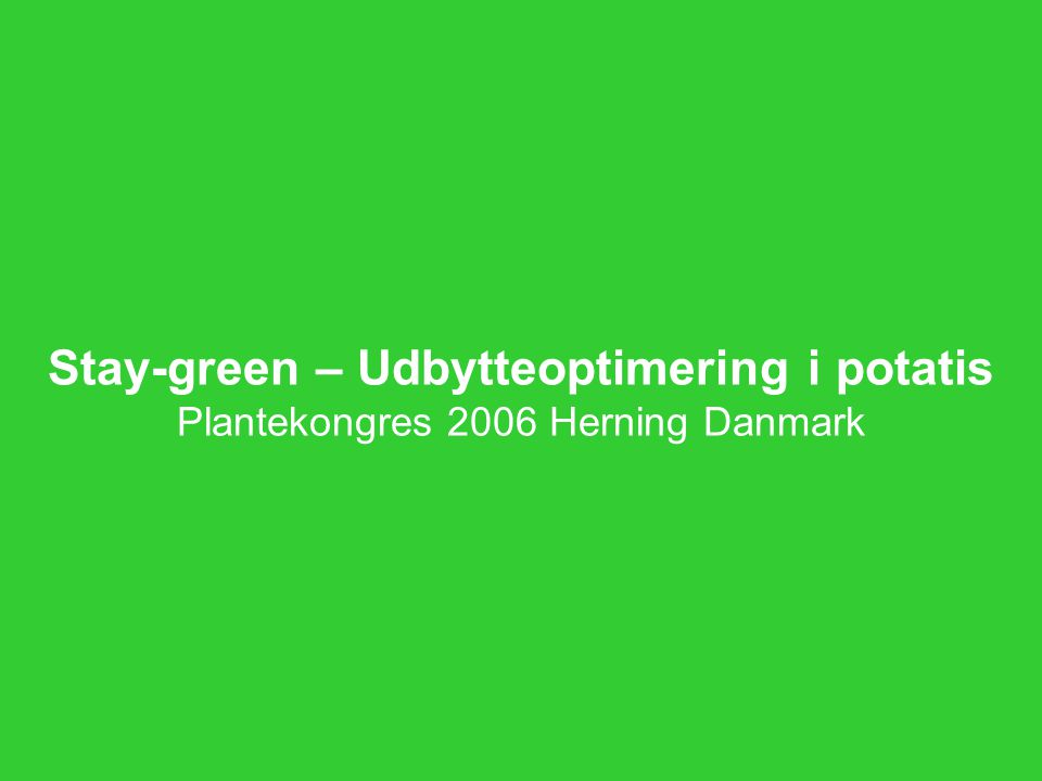 Stay-green – Udbytteoptimering i potatis Plantekongres 2006 Herning Danmark