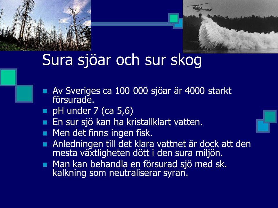 Sura sjöar och sur skog Av Sveriges ca 100 000 sjöar är 4000 starkt försurade. pH under 7 (ca 5,6) En sur sjö kan ha kristallklart vatten. Men det fin