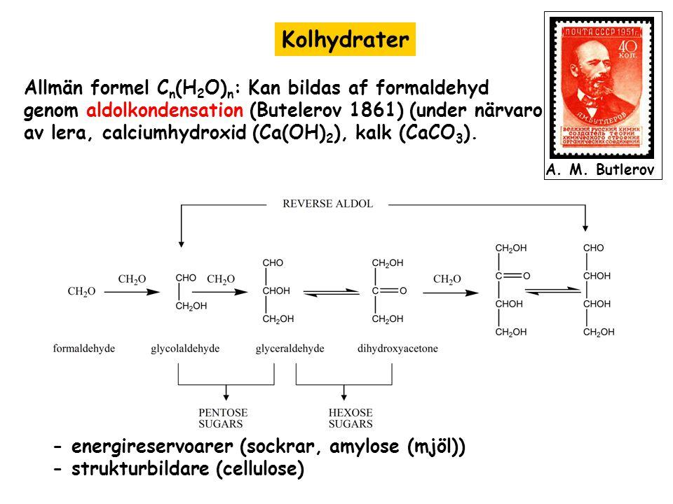 Kolhydrater Allmän formel C n (H 2 O) n : Kan bildas af formaldehyd genom aldolkondensation (Butelerov 1861) (under närvaro av lera, calciumhydroxid (Ca(OH) 2 ), kalk (CaCO 3 ).