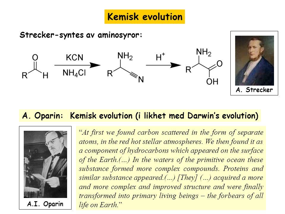 """Kemisk evolution Strecker-syntes av aminosyror: A. Strecker A. Oparin: Kemisk evolution (i likhet med Darwin's evolution) """"At first we found carbon sc"""