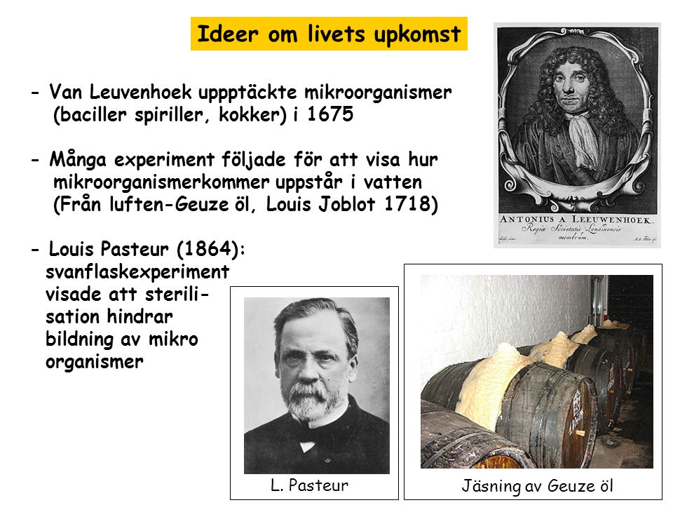 Ideer om livets upkomst - Van Leuvenhoek uppptäckte mikroorganismer (baciller spiriller, kokker) i 1675 - Många experiment följade för att visa hur mikroorganismerkommer uppstår i vatten (Från luften-Geuze öl, Louis Joblot 1718) - Louis Pasteur (1864): svanflaskexperiment visade att sterili- sation hindrar bildning av mikro organismer Jäsning av Geuze öl L.