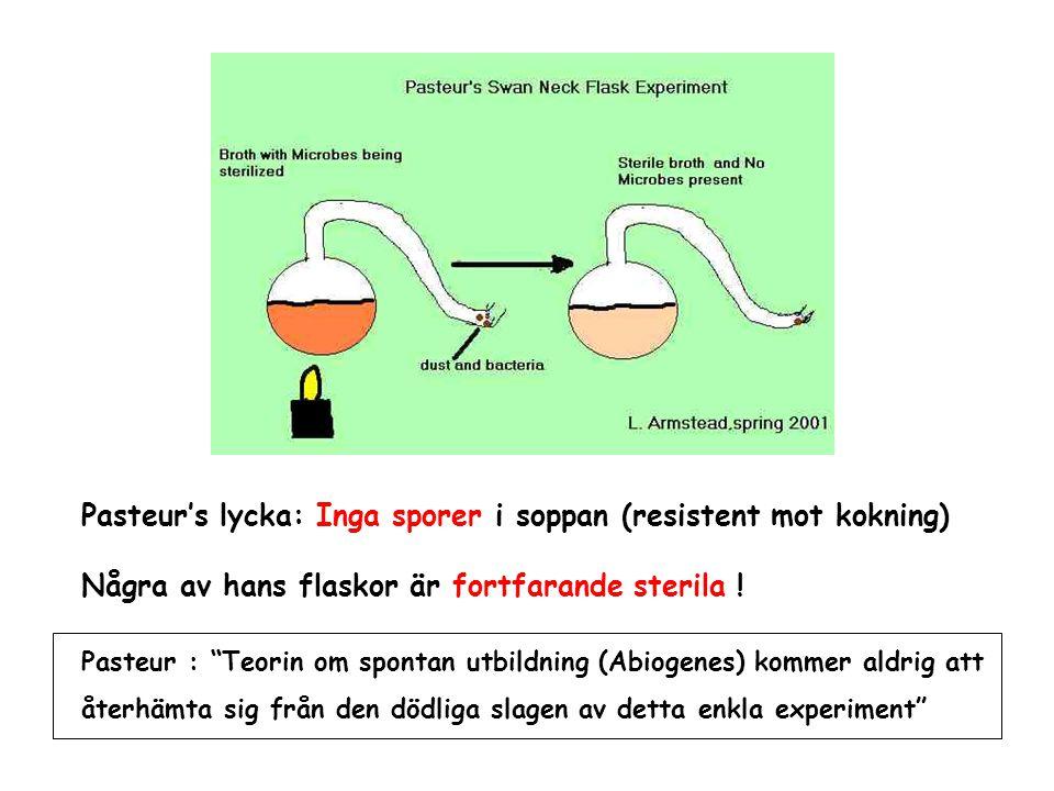 """Pasteur's lycka: Inga sporer i soppan (resistent mot kokning) Några av hans flaskor är fortfarande sterila ! Pasteur : """"Teorin om spontan utbildning ("""