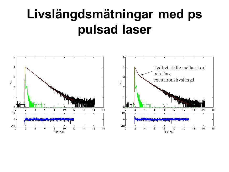 Livslängdsmätningar med ps pulsad laser Tydligt skifte mellan kort och lång excitationslivslängd