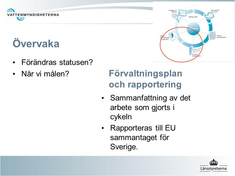 Förvaltningsplan och rapportering Sammanfattning av det arbete som gjorts i cykeln Rapporteras till EU sammantaget för Sverige. Övervaka Förändras sta