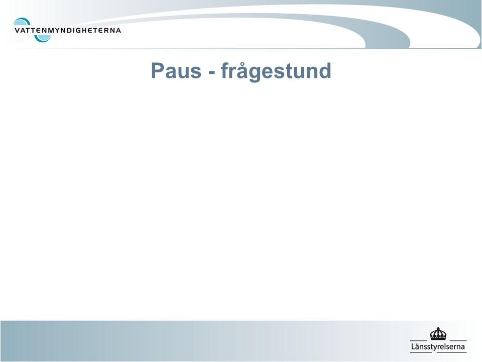 Paus - frågestund