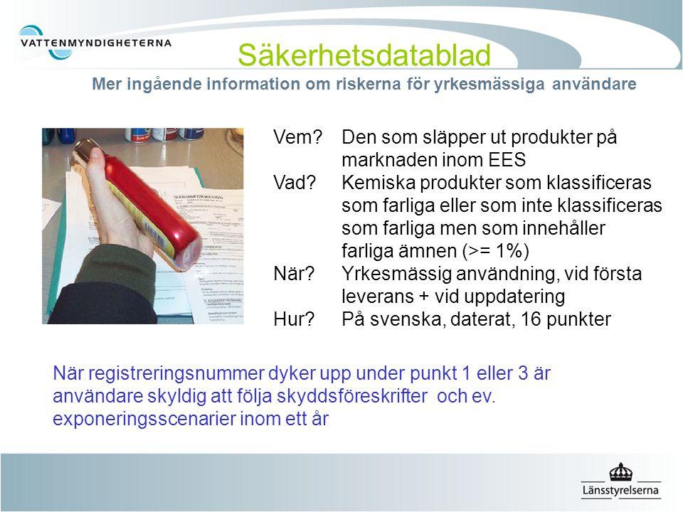 Säkerhetsdatablad Mer ingående information om riskerna för yrkesmässiga användare Vem?Den som släpper ut produkter på marknaden inom EES Vad? Kemiska