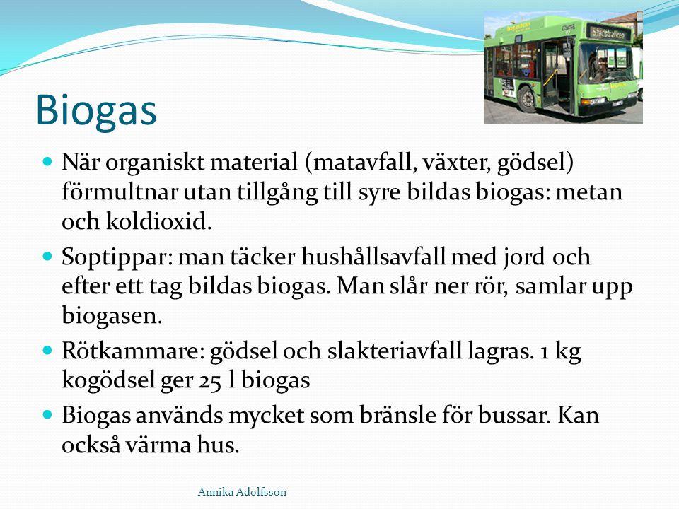 Biogas När organiskt material (matavfall, växter, gödsel) förmultnar utan tillgång till syre bildas biogas: metan och koldioxid. Soptippar: man täcker