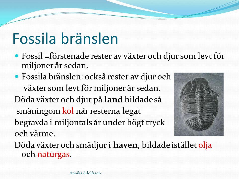 Fossila bränslen Fossil =förstenade rester av växter och djur som levt för miljoner år sedan. Fossila bränslen: också rester av djur och växter som le