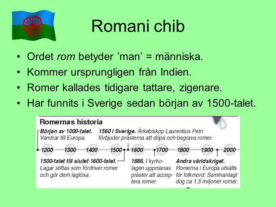 Romani chib Ordet rom betyder 'man' = människa. Kommer ursprungligen från Indien. Romer kallades tidigare tattare, zigenare. Har funnits i Sverige sed