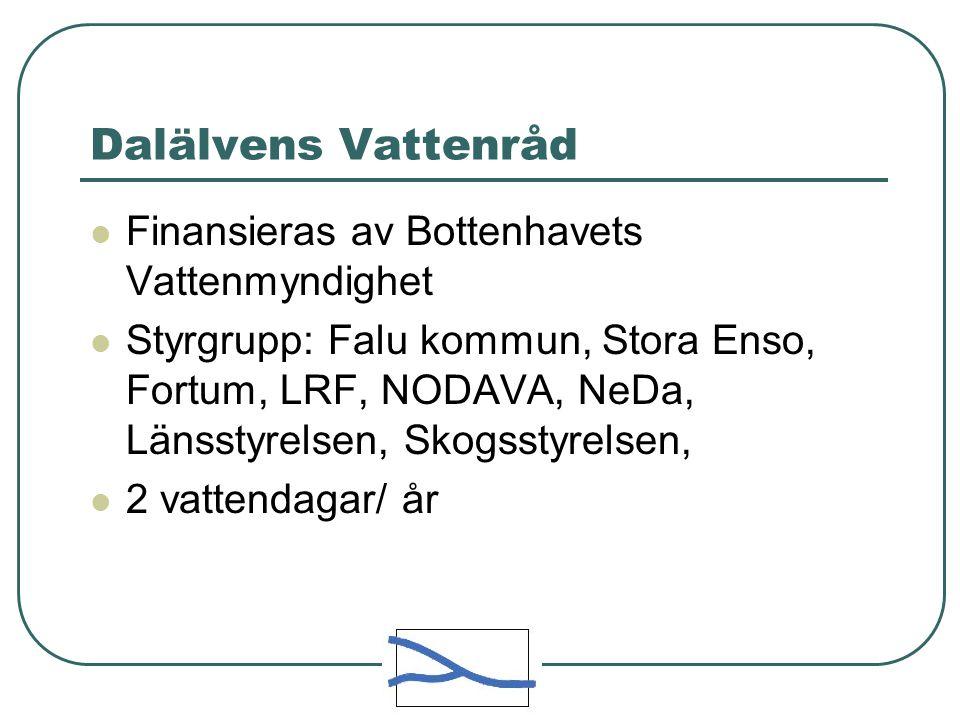 Dalälvens Vattenråd Finansieras av Bottenhavets Vattenmyndighet Styrgrupp: Falu kommun, Stora Enso, Fortum, LRF, NODAVA, NeDa, Länsstyrelsen, Skogsstyrelsen, 2 vattendagar/ år