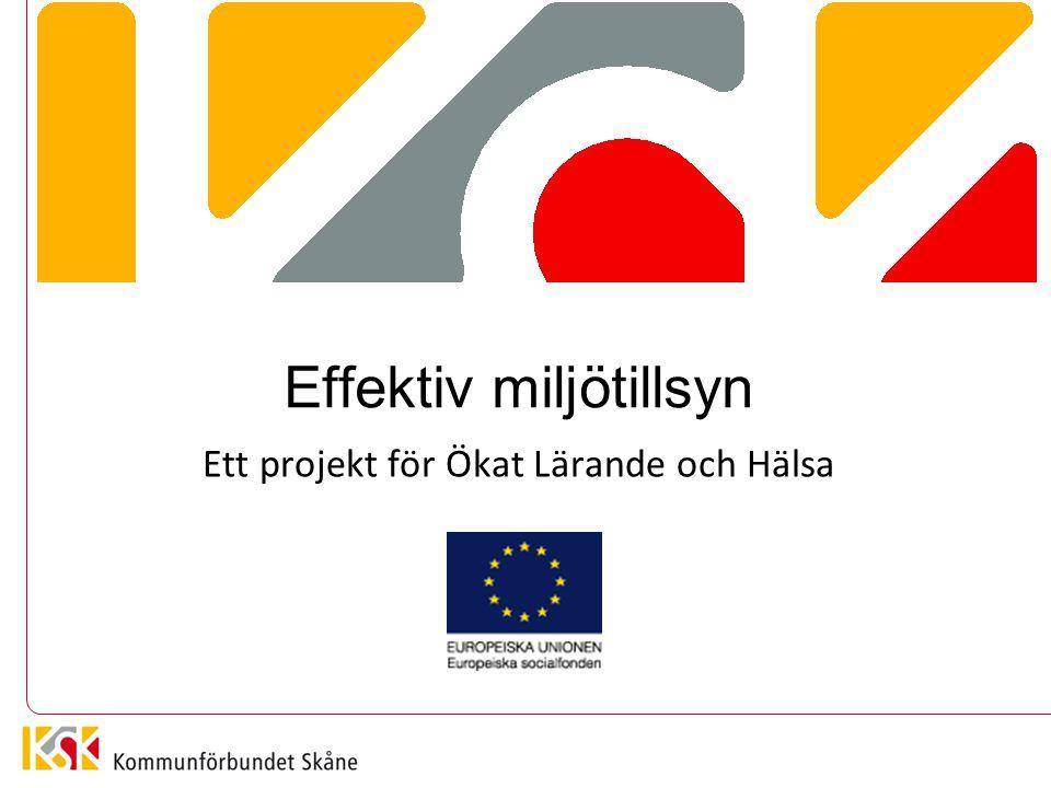 PROJEKTET I KORTHET Kompetensutveckling och samverkan Kommunikation och bemötande Kommunförbundet Skåne – 33 kommuner Europeiska socialfonden 2012/2013