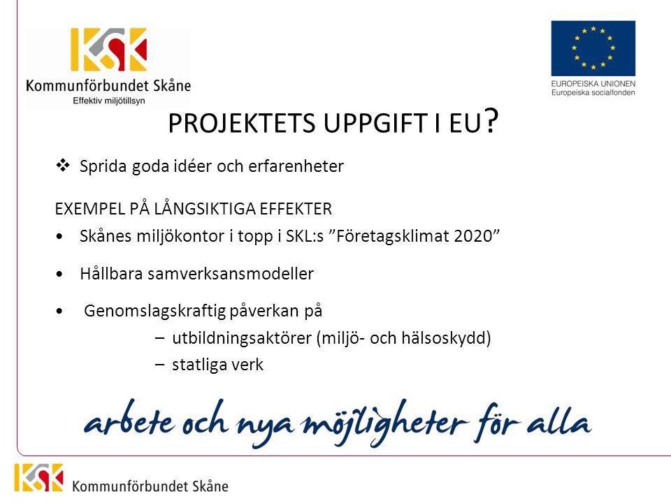 PROJEKTETS UPPGIFT I EU .