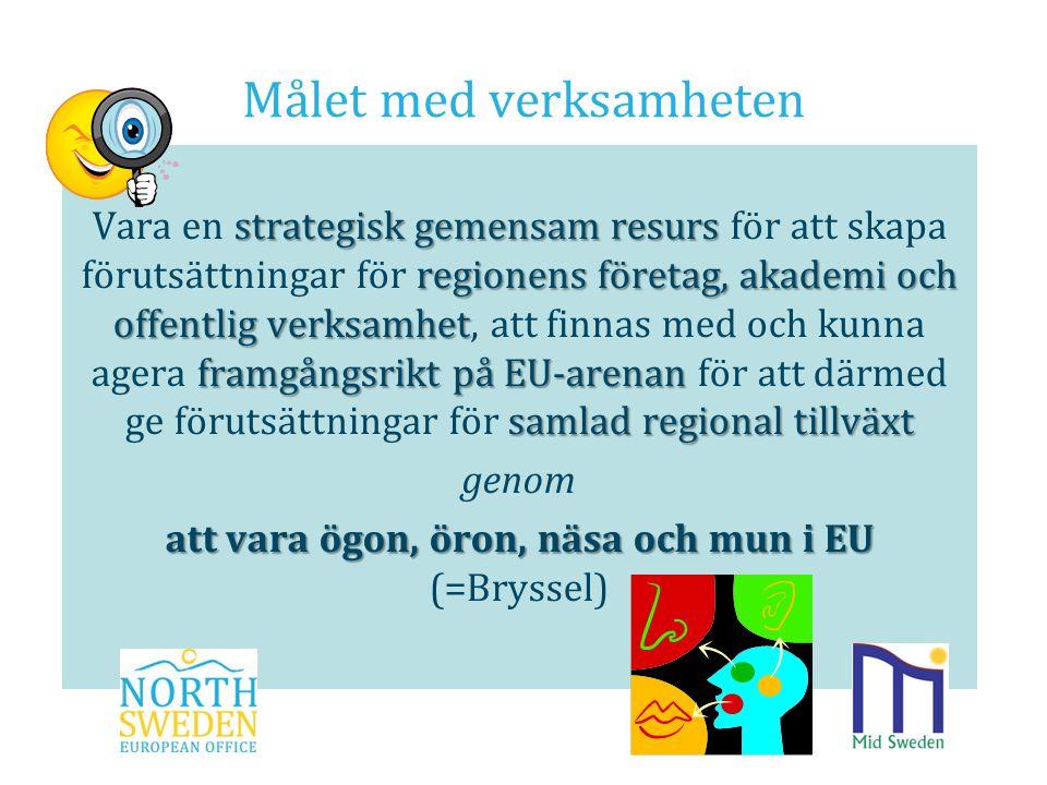 Målet med verksamheten strategisk gemensam resurs regionens företag, akademi och offentlig verksamhet framgångsrikt på EU-arenan samlad regional tillv