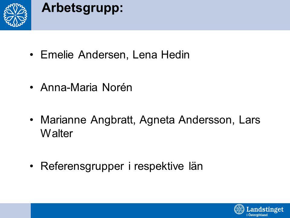 Arbetsgrupp: Emelie Andersen, Lena Hedin Anna-Maria Norén Marianne Angbratt, Agneta Andersson, Lars Walter Referensgrupper i respektive län