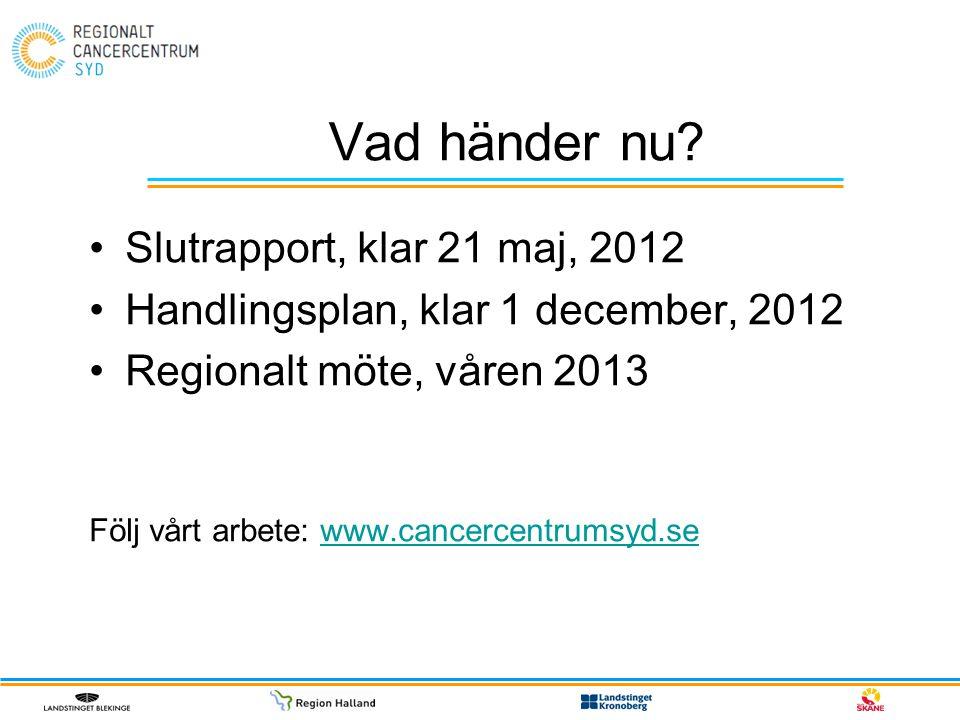 Vad händer nu? Slutrapport, klar 21 maj, 2012 Handlingsplan, klar 1 december, 2012 Regionalt möte, våren 2013 Följ vårt arbete: www.cancercentrumsyd.s