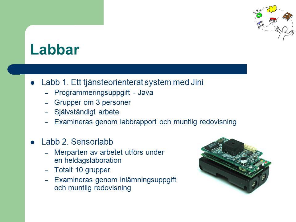 Labbar Labb 1. Ett tjänsteorienterat system med Jini – Programmeringsuppgift - Java – Grupper om 3 personer – Självständigt arbete – Examineras genom