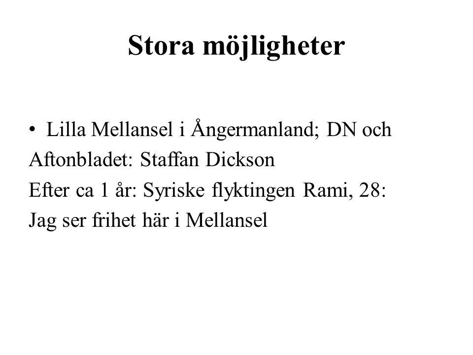 Stora möjligheter Lilla Mellansel i Ångermanland; DN och Aftonbladet: Staffan Dickson Efter ca 1 år: Syriske flyktingen Rami, 28: Jag ser frihet här i Mellansel