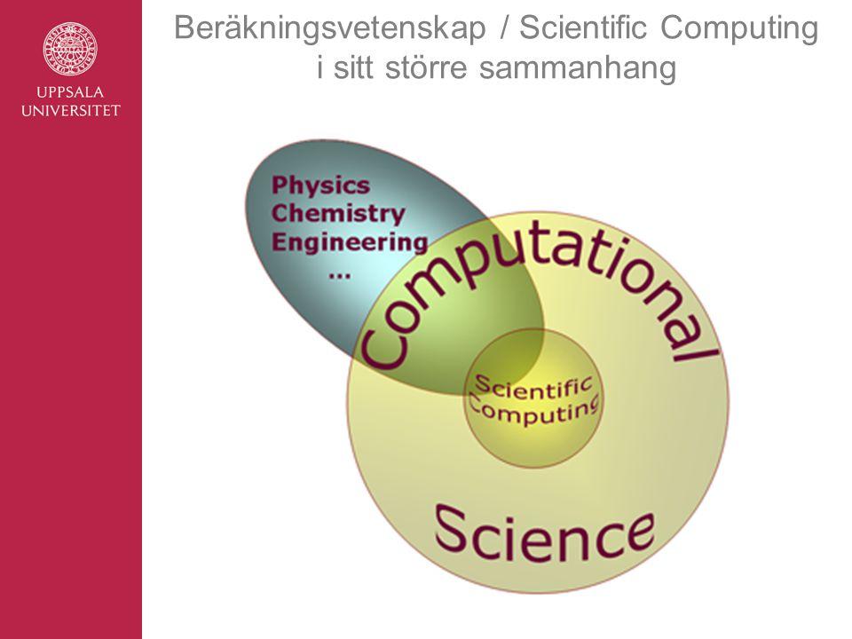 Vilka frågeställningar är beräkningsvetenskapliga.