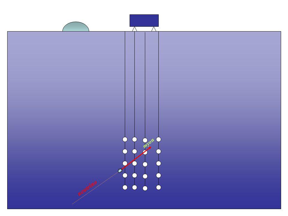 neutrino myon