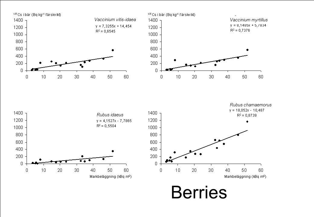 Berries Vaccinium vitis-idaea Vaccinium myrtillus Rubus idaeus Rubus chamaemorus