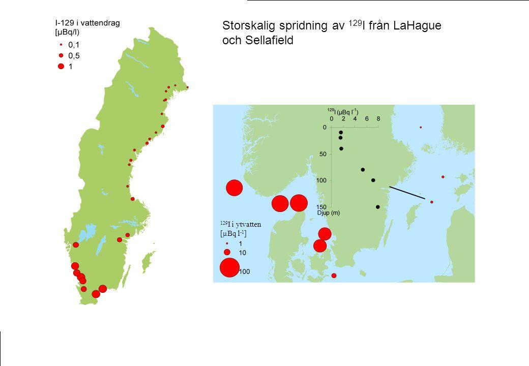 129 I i vattendrag [µBq l -1 ] Storskalig spridning av 129 I från LaHague och Sellafield 129 I i ytvatten [µBq l -1 ]