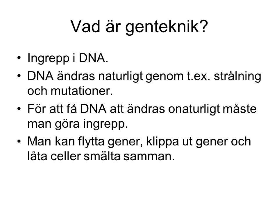 Vad är genteknik.Ingrepp i DNA. DNA ändras naturligt genom t.ex.