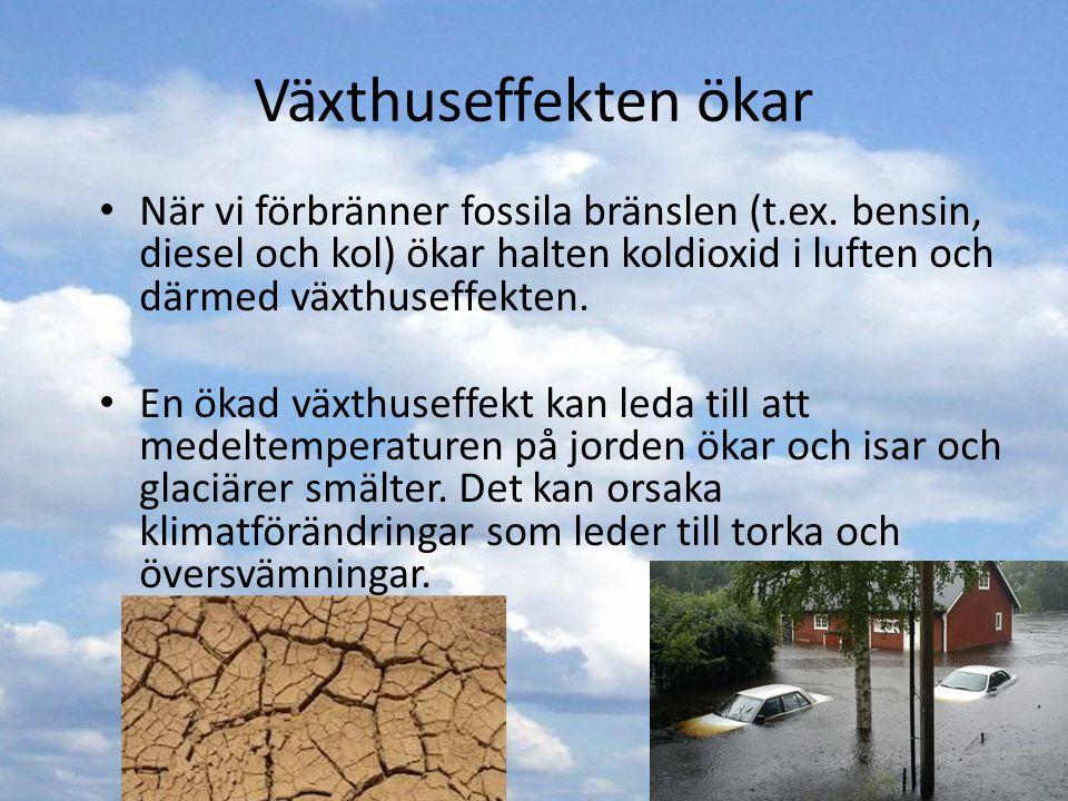 Växthuseffekten ökar När vi förbränner fossila bränslen (t.ex. bensin, diesel och kol) ökar halten koldioxid i luften och därmed växthuseffekten. En ö