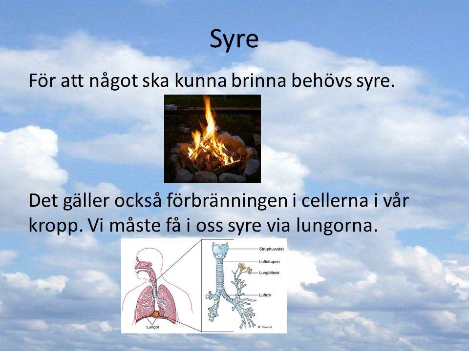 Syre För att något ska kunna brinna behövs syre. Det gäller också förbränningen i cellerna i vår kropp. Vi måste få i oss syre via lungorna.