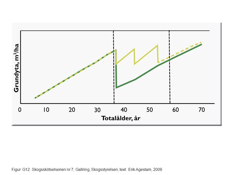 Figur G12. Skogsskötselserien nr 7, Gallring, Skogsstyrelsen, text: Erik Agestam, 2009