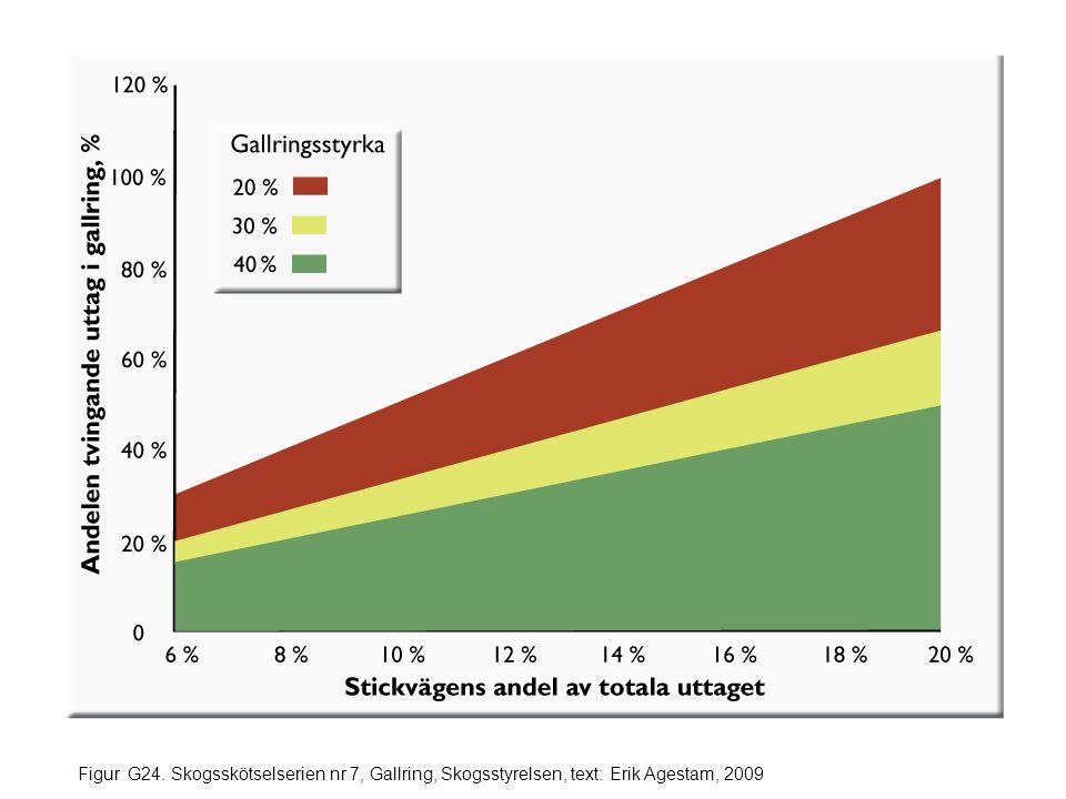 Figur G24. Skogsskötselserien nr 7, Gallring, Skogsstyrelsen, text: Erik Agestam, 2009