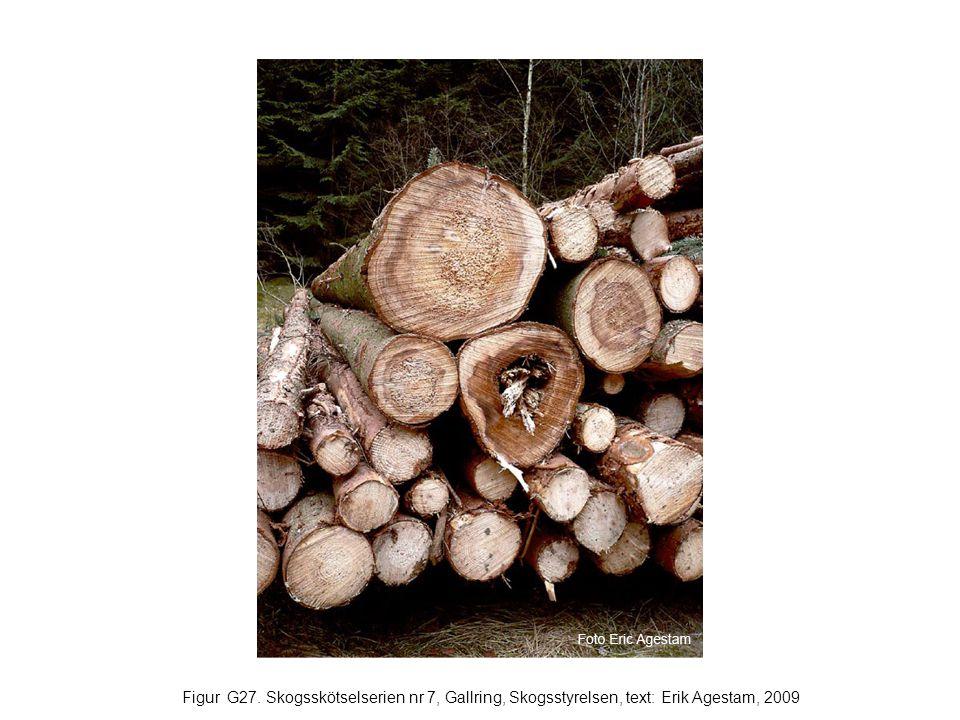 Figur G27. Skogsskötselserien nr 7, Gallring, Skogsstyrelsen, text: Erik Agestam, 2009