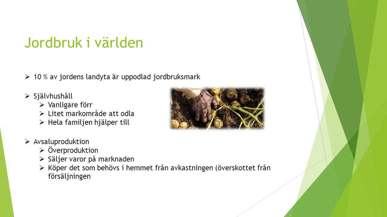 Jordbruk i världen  Självhushåll  Vanligare förr  Litet markområde att odla  Hela familjen hjälper till  Avsaluproduktion  Överproduktion  Säljer varor på marknaden  Köper det som behövs i hemmet från avkastningen (överskottet från försäljningen  10 % av jordens landyta är uppodlad jordbruksmark