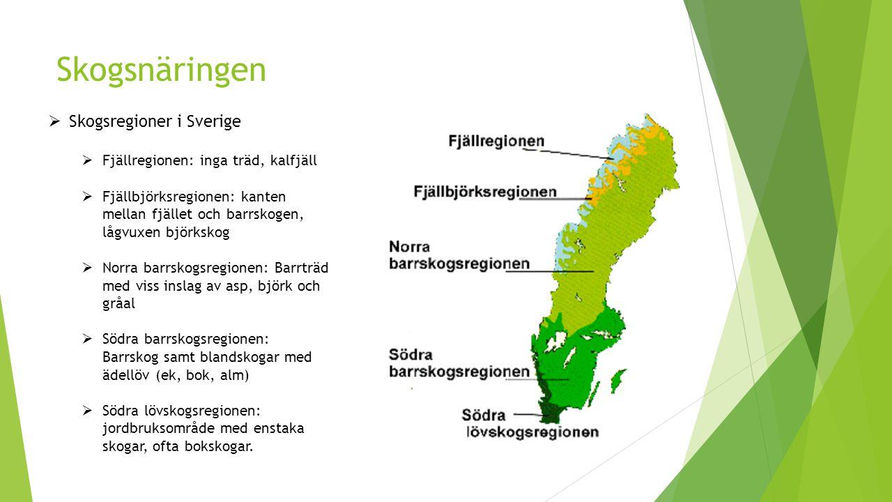 Skogsnäringen  Skogsregioner i Sverige  Fjällregionen: inga träd, kalfjäll  Fjällbjörksregionen: kanten mellan fjället och barrskogen, lågvuxen björkskog  Norra barrskogsregionen: Barrträd med viss inslag av asp, björk och gråal  Södra barrskogsregionen: Barrskog samt blandskogar med ädellöv (ek, bok, alm)  Södra lövskogsregionen: jordbruksområde med enstaka skogar, ofta bokskogar.