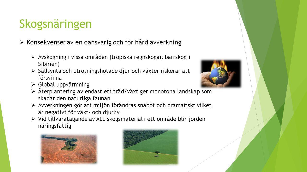 Skogsnäringen  Konsekvenser av en oansvarig och för hård avverkning  Avskogning i vissa områden (tropiska regnskogar, barrskog i Sibirien)  Sällsynta och utrotningshotade djur och växter riskerar att försvinna  Global uppvärmning  Återplantering av endast ett träd/växt ger monotona landskap som skadar den naturliga faunan  Avverkningen gör att miljön förändras snabbt och dramatiskt vilket är negativt för växt- och djurliv  Vid tillvaratagande av ALL skogsmaterial i ett område blir jorden näringsfattig