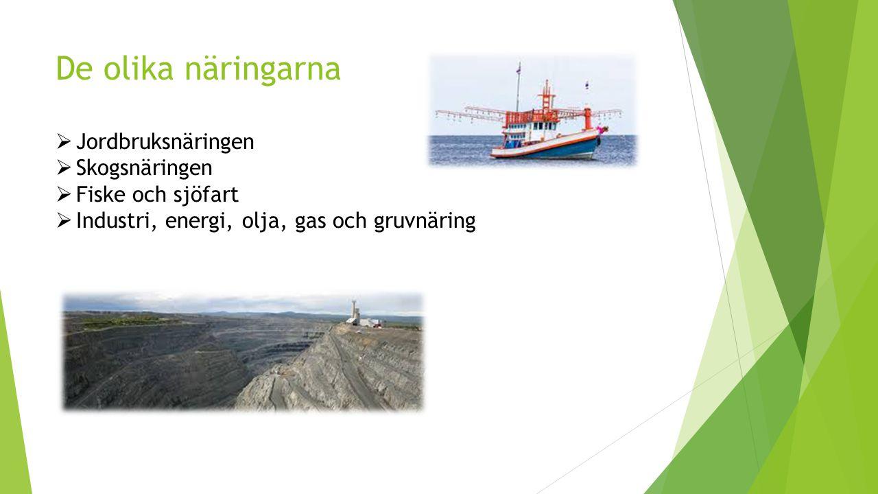 De olika näringarna  Jordbruksnäringen  Skogsnäringen  Fiske och sjöfart  Industri, energi, olja, gas och gruvnäring