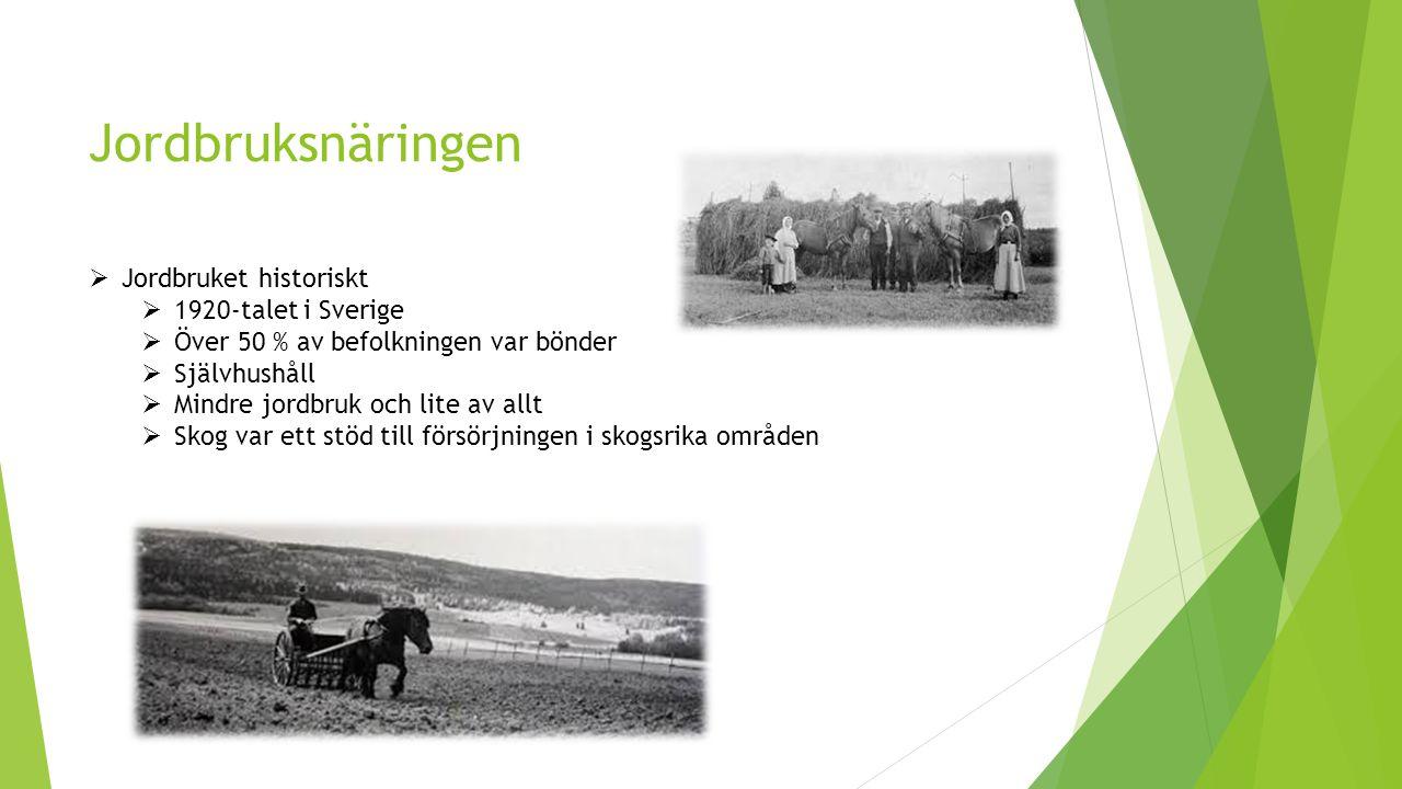 Jordbruksnäringen  Jordbruket historiskt  1920-talet i Sverige  Över 50 % av befolkningen var bönder  Självhushåll  Mindre jordbruk och lite av allt  Skog var ett stöd till försörjningen i skogsrika områden